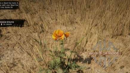 Пустынный мак в RDR 2