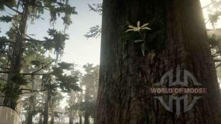 Орхидея Звезда Акуньи в RDR 2