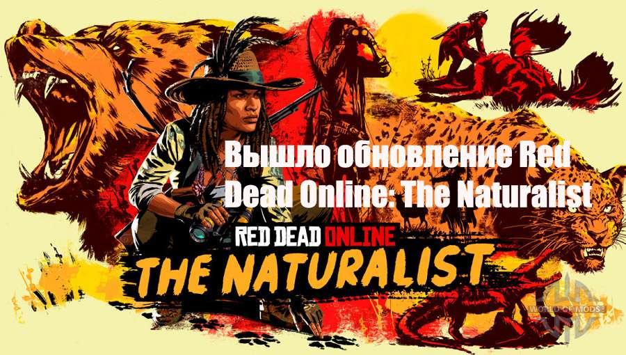 Обновление RDR Online