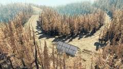 Пепельный лес v2.5 для Spin Tires