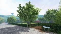 Folley hill farm для Farming Simulator 2015