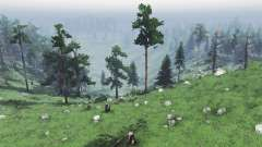 No roads loggers для Spin Tires