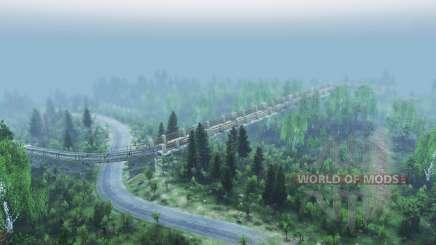 Смешанный лес 2 v2.0 для Spin Tires