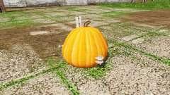 Pumpkin weight