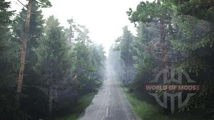 Лесной для Spin Tires