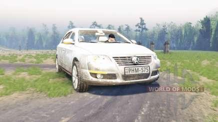 Volkswagen Passat (B6) для Spin Tires