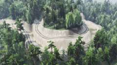 Лесовоз для Spin Tires