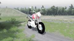 BMW R1100R для Spin Tires