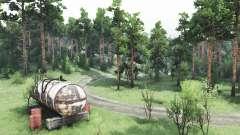 Прогулка по лесу для Spin Tires