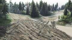 Лесные дороги v2.0 для Spin Tires