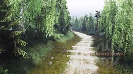 Лес и карьер v4.0 для Spin Tires