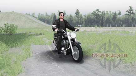Harley-Davidson FLSTF Fat Boy для Spin Tires