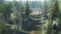 Лес v1.0 для MudRunner