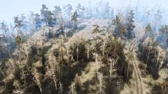 Лесной район для MudRunner