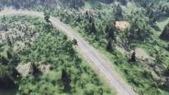 Федеральная дорога 3 для Spin Tires