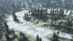 Лесные болота для Spin Tires