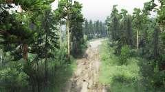 Заповедный лес для Spin Tires