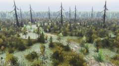 Жуткий лес 2 для Spin Tires