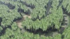 Сибирский лес для Spin Tires
