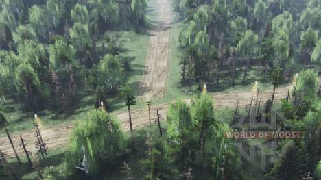 Сухой лес v2.0 для Spin Tires