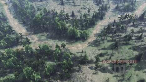 Лесные дороги для Spin Tires