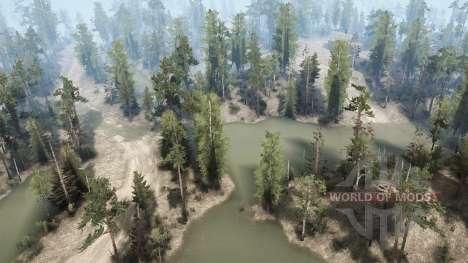 Болотистая местность для Spintires MudRunner