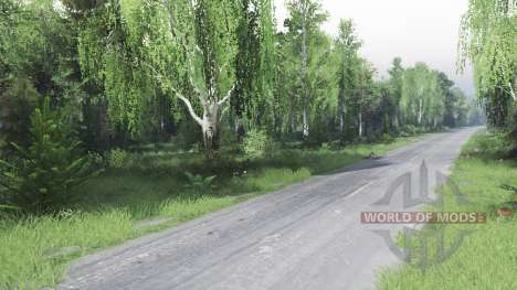 Лес 2 для Spin Tires