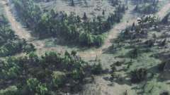 Forest road для Spin Tires