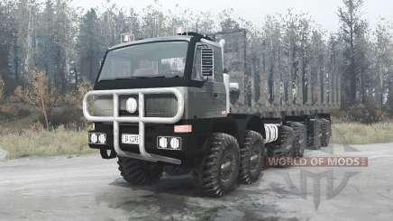 Tatra T815 TerrNo1 12x12 1998 для MudRunner