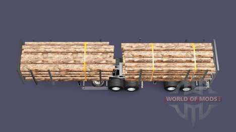 Metalesp Bitrem Florestal для Euro Truck Simulator 2