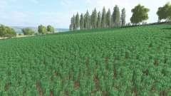 Agra Sanоv для Farming Simulator 2017