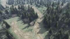 Forest для Spin Tires