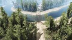 В середине леса