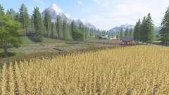 Итальянская ферма
